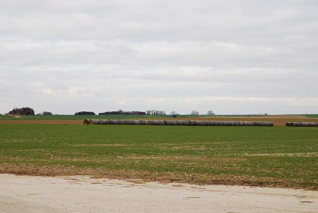 Bales lining runway - Tarrant Rushton airfield
