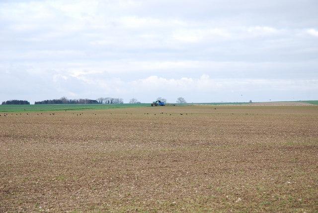 Tarrant Rushton airfield - returned to farming