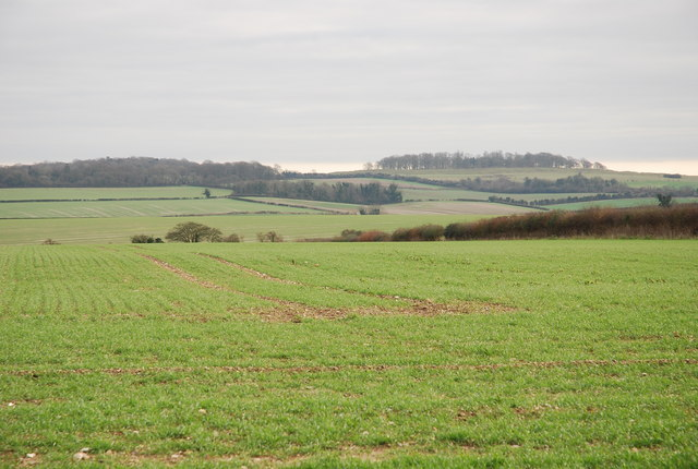 Roman Road to Badbury Rings