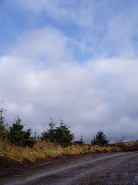Telephone mast in Clocaenog Forest