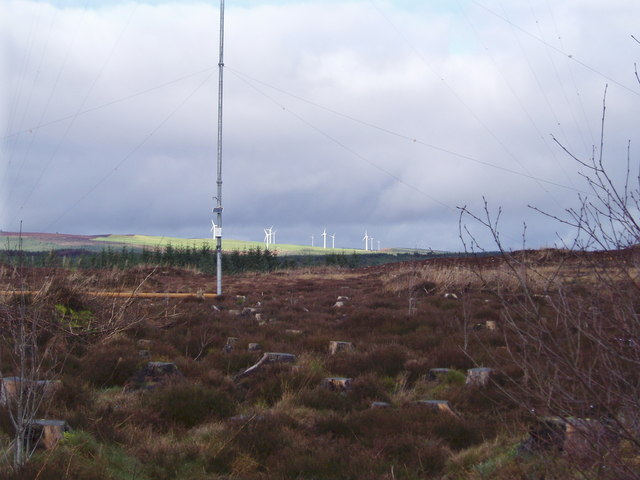 New technology in Clocaenog Forest