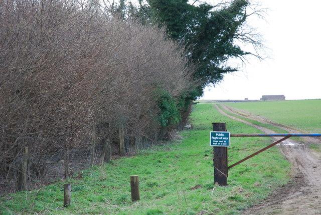 Track By Jubilee Wood