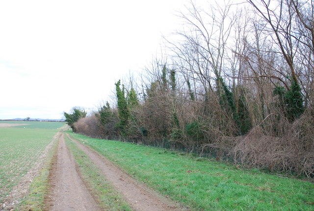 Track along northern edge of Jubilee Wood