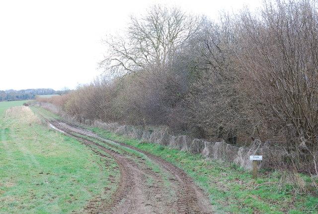 Track beside Jubilee Wood