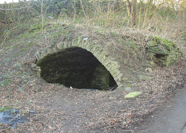Vaulted cellar, Shepherds Thorn Lane, Rastrick