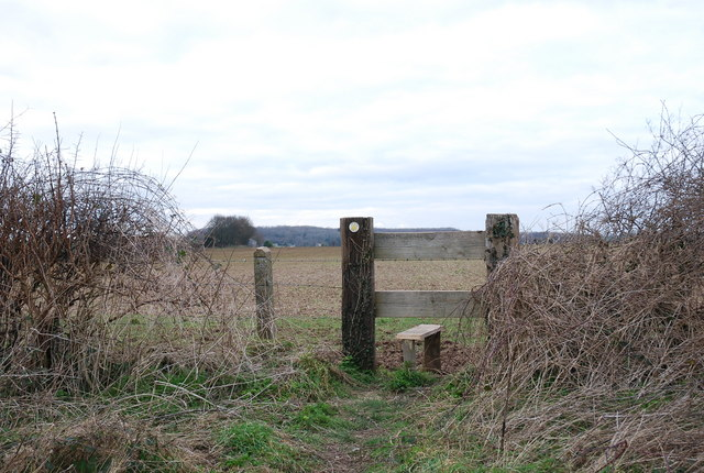 Stile towards Tarrant Keynston