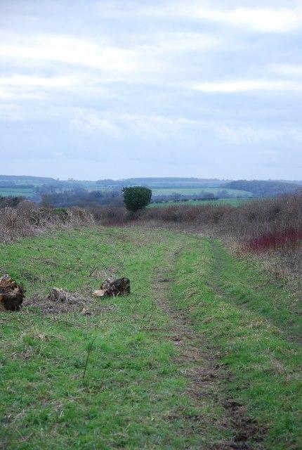 Parish Boundary Footpath (bridleway)
