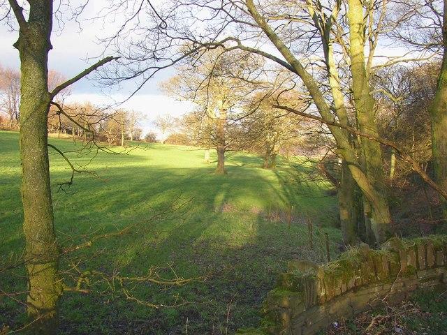 Gate Close, Shepherds Thorn Lane, Rastrick