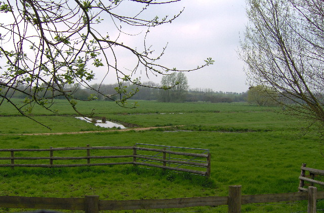 Water meadows by the River Stour at Sudbury