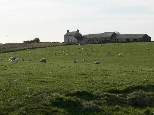 Traffwll, near Llanfihangel yn Nhowyn.