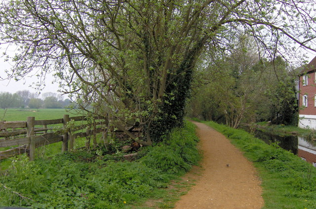 Path by the River Stour, Sudbury