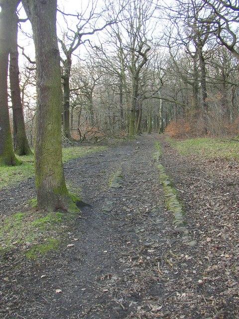 Public footpath in Lower Fell Greave, Bradley, Huddersfield