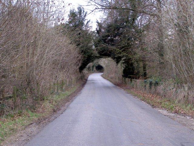 Longwood Road, Lane End Down