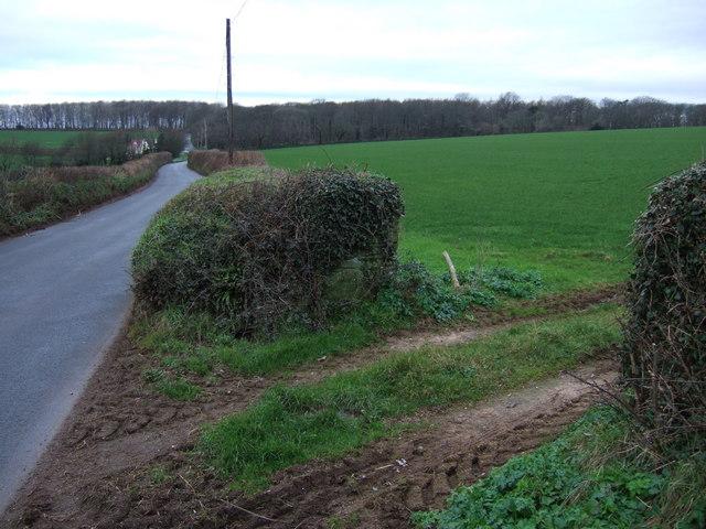 B3197 near Bowringsleigh