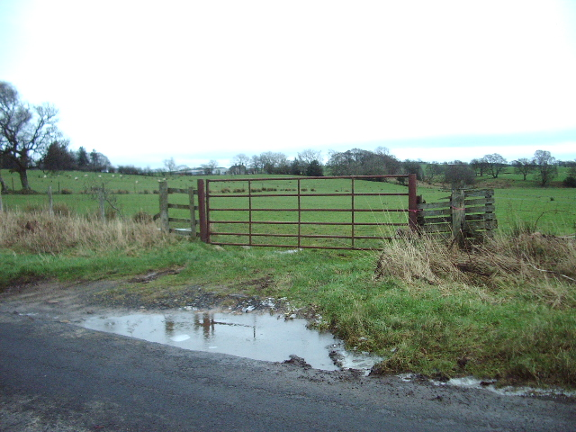 Field gate on the way to Catlowdy