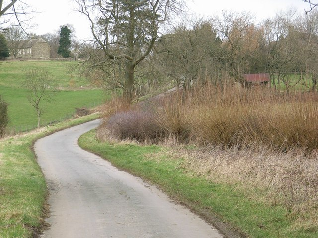 Looking up the lane