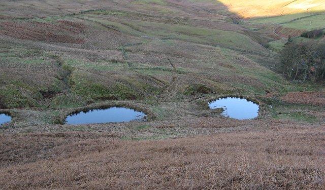 Ponds, Glenlude