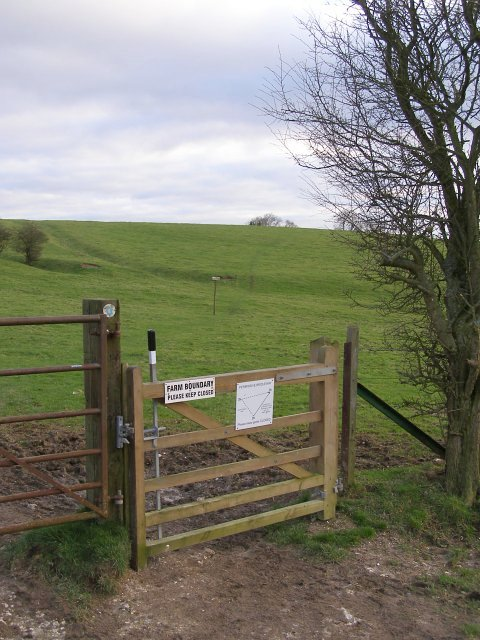Gate on the South Downs Way, Gander Down