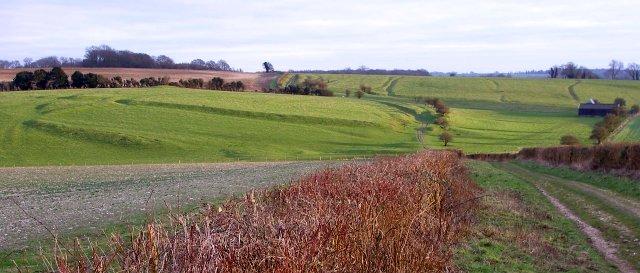 Ancient aggregate field system, Ganderdown Farm