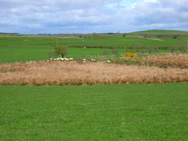 Farmland near March Farm