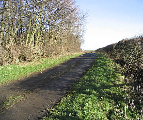 Track near Newhouses Farm