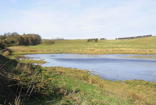 Pond at Well Hill