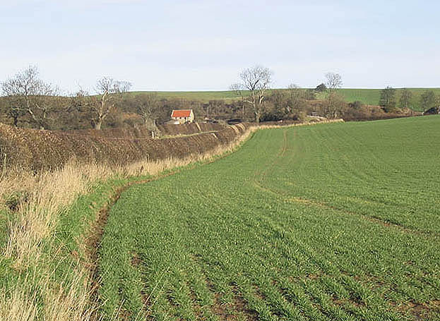 Arable field near Hoppen
