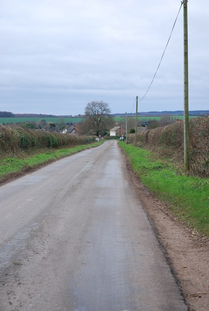 Roman Road to Shapwick