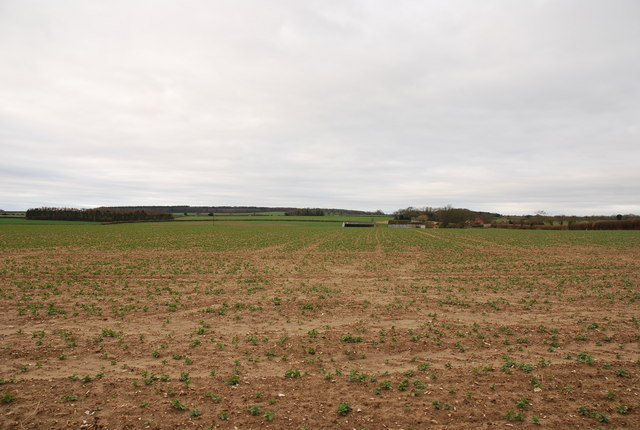 View towards South Farm