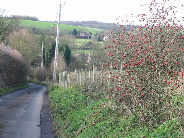 View down Rose Lane, Bishopsbourne.