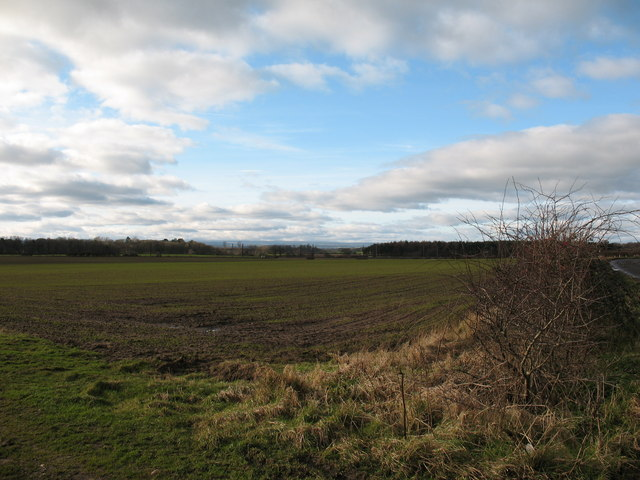 Arable land near Thirsk
