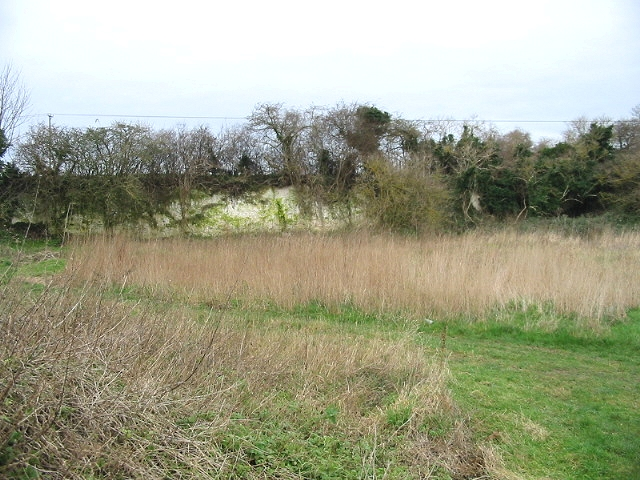 Disused chalk pit, Woodlands Road, Adisham.