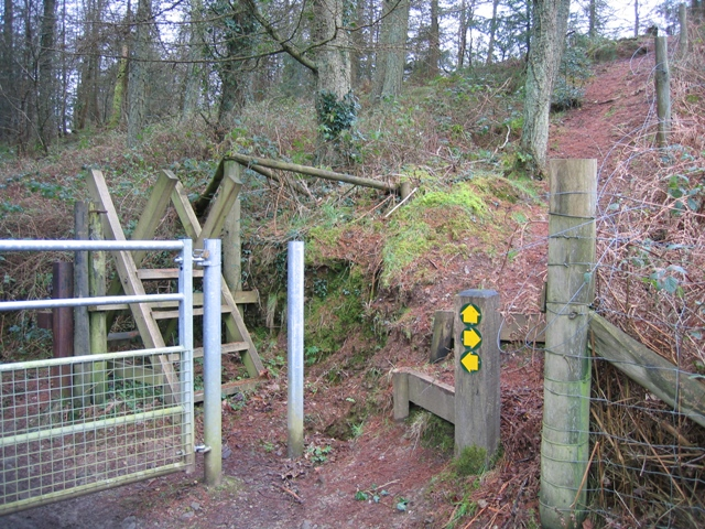 Forestry Footpaths
