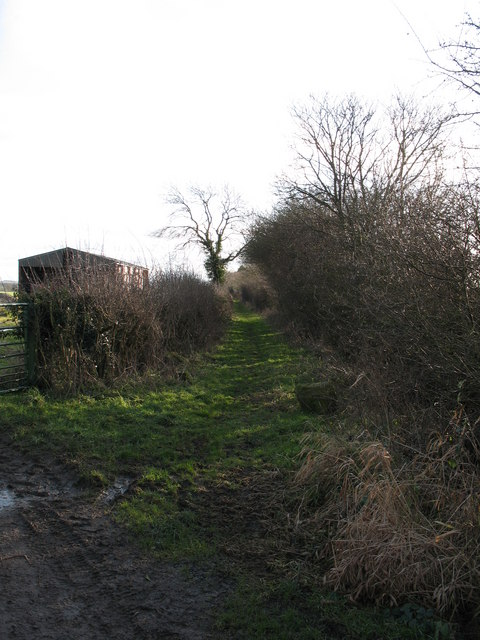 Pillrigg Lane, Thornton le Beans