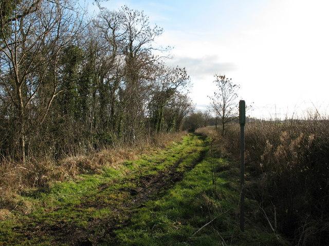 Green Lane near Thornton le Beans