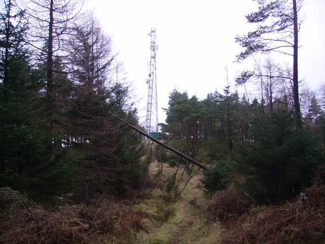 Mast, Monk Coniston Moor