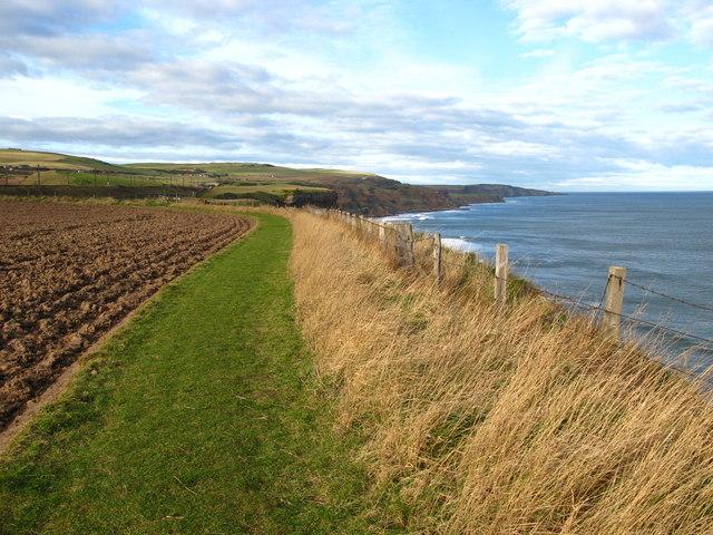 Berwickshire Coastal Path at Marshall Meadows