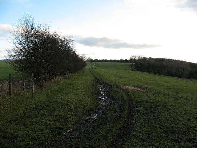 Footpath across hillside near West Harlsey