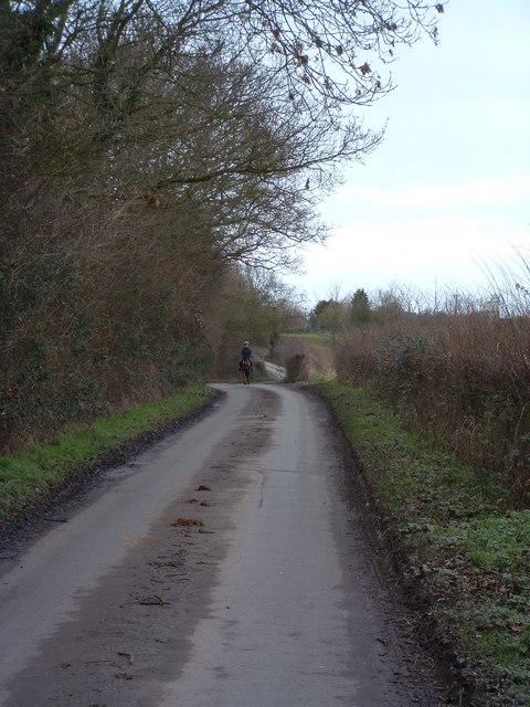 Distant Horse Rider