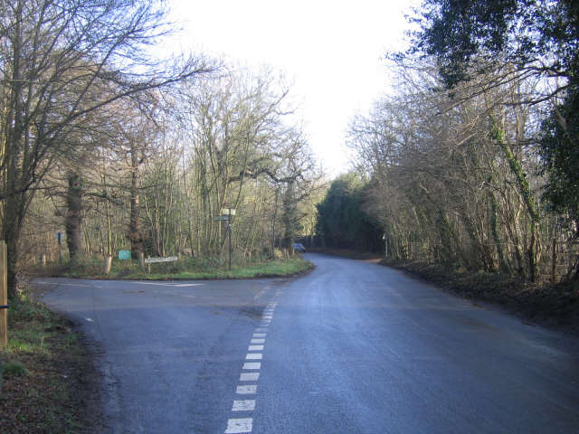 Woodland junction, Shorne