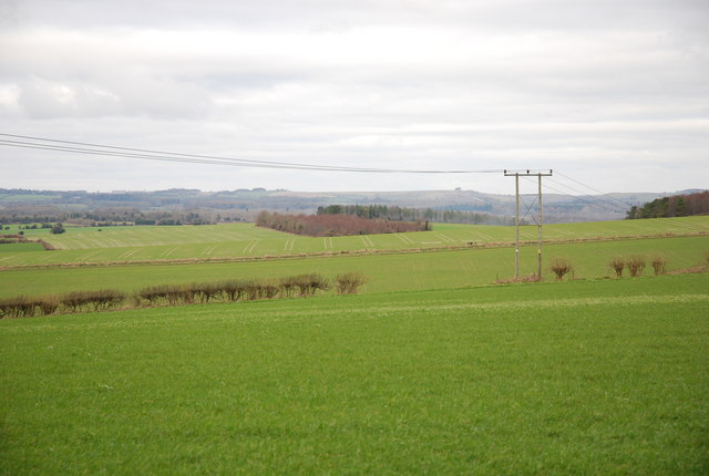 View from top of Turner's Lane