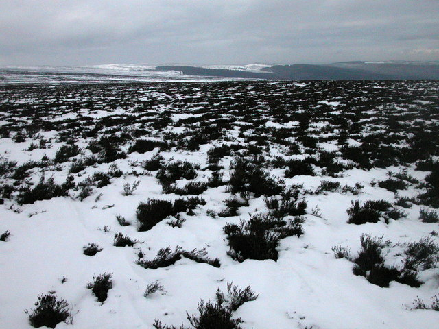 Derwent Moors in the snow