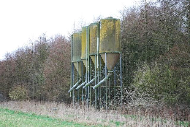 Grain silos alongside Horse Coppice