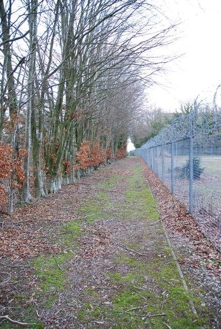 Footpath around Blandford Camp