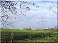 TQ6767 : Electricity Pylons, Cobhambury by Stephen Craven