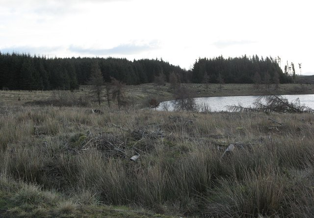 Crooked Loch
