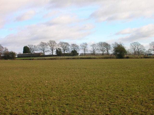 Field near Tourle's Farm