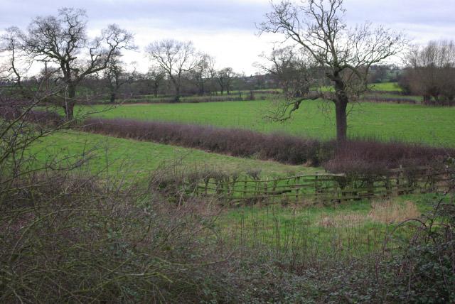 Farmland east of Burnaston