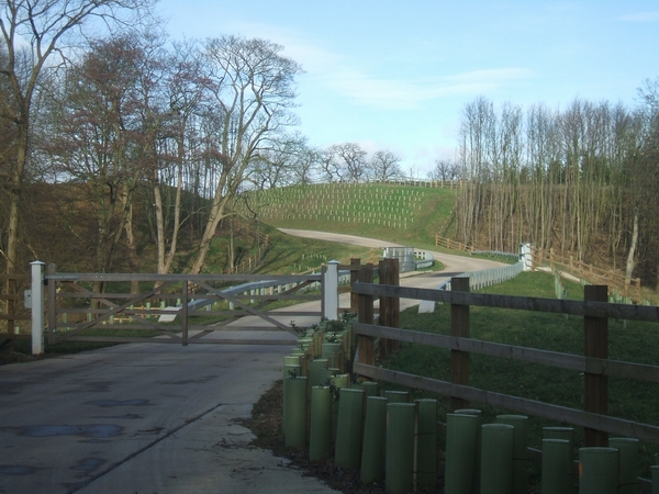 New entrance to Thickbroom Farm