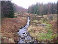 SD3396 : Grizedale Beck by Michael Graham